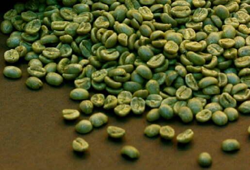 Yeşil kahve faydaları